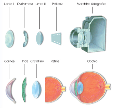 occhi vs macchina fotografica